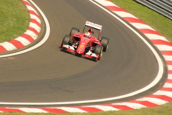Vettel 2015 Hungarian GP - Rob O'Connor